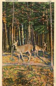 Deer Hunter's Dream