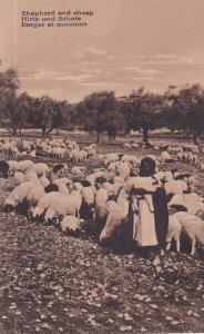 1900-1910s; Shepherd And Sheep