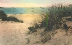 Ocean City Maryland~Hotel Stephen Decatur~Sand Dunes and Sea~1920s Handcolored