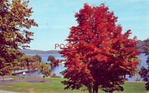 THE RECREATION FIELD AND LAKE FRONT SILVER BAY, N. Y. on LAKE GEORGE