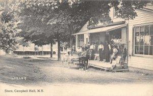 Store People Wagon Campbell Hall New York 1910c postcard