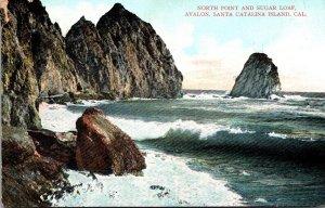 California Catalina Island Avalon North Point and Sugar Loaf 1908
