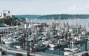 Nanaimo Fishing Fleet with Malaspina Hotel and NewcastleIsland, British Colum...