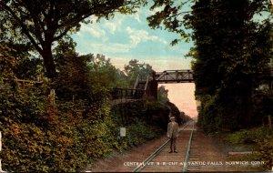 Connecticut Norwich Central Vermont Railroad Cut At Yantic Falls Curteich