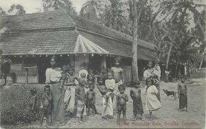 Ceylon Postcard Typical roadside Borella Colombo