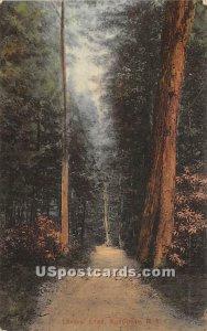 Lovers' Lane - Monticello, New York