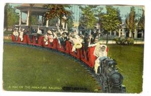 People ride miniature train, 00-10s