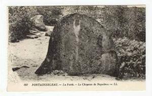 La Foret, Le Chapeau de Napoleon,Fontainebleau,France 1900-10s PU