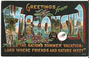 Vintage Big Letter Postcard Greetings From Wisconsin Large Letter Nature Scenes
