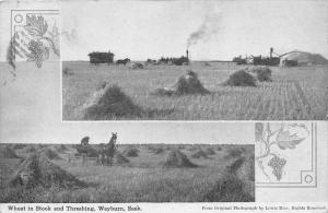 1440  Weyburn Sask.    Wheat in Stock and Threshing,  Horses pulling wagons