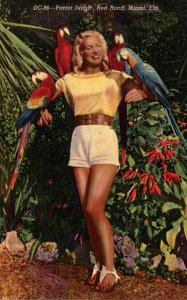 Florida Miami Parrot Jungle Beautiful Girl With Colorful Macaws