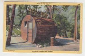 P2221, vintage  postcard end of trail red wood log rest room calif