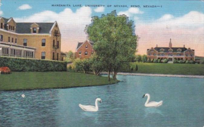 Nevada Reno White Swans On Manzanite Lake Universsity Of Nevada 1951