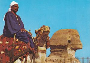 Camel Driver Near The Famous Sphinx, GIZA, Egypt, 50-70´s