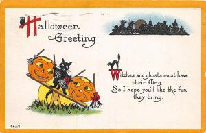 E14/ Halloween Holiday Postcard 1915 Marysville Ohio Cats Jack-O-Lanterns Owl 24