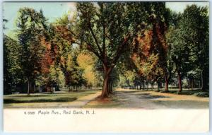 RED BANK, New Jersey  NJ   MAPLE AVENUE Street Scene  c1900s Rotograph Postcard