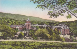 Virginia Hot Springs The Homestead Hotel From Sunset Hill Albertype