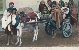 Arab women & Donkey Cart , 00-10s : EGYPT