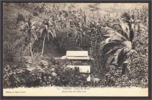 Tahiti Away From the White Man Postcard 1910s-1920s Edition G. Spitz No. 17