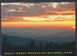 America Postcard - Great Smoky Mountains National Park, Tennessee  DC2698