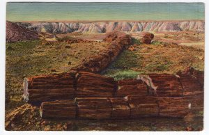 Petrified Forest, Arizona, The Twin Sisters (In Second Forest)