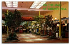 1960s/70s Cherry Hill Shopping Mall Woolworth's, Cherry Hill, NJ Postcard *5A