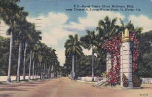 Royal Palms Along Mcgregor Boulevard Near Thomas A Edison Winter Home Fort My...