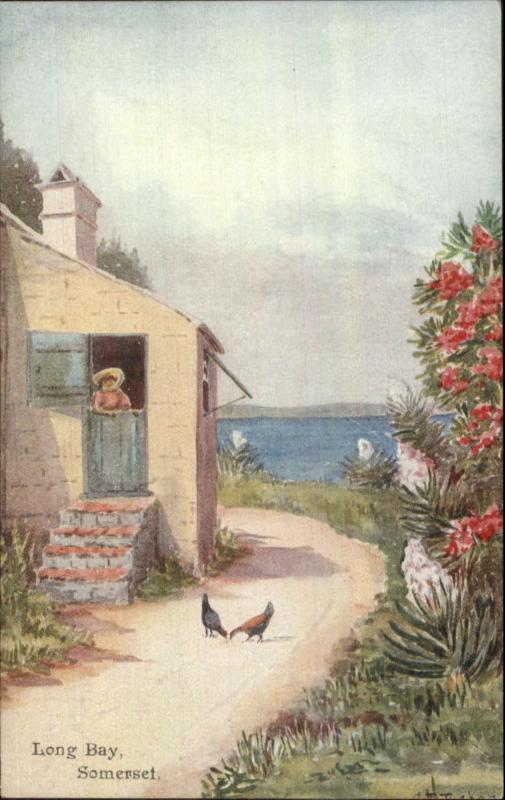 Bermuda - Ethel & CF Tucker View Postcard/Card - Long Bay Somersey