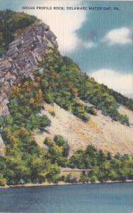 Indian Profile Rock Delaware Water Gap Pennsylvania