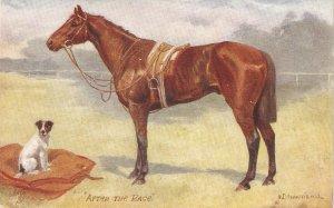 Norah Drummond.  After the Race Tuck Oiette Man's Best Friend Ser.PC # 9561