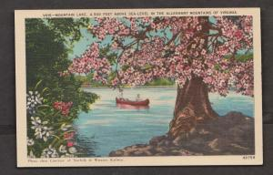 Mountain Lake In The Alleghany Mountains Virginia - Unused c1925