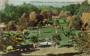 California Sonoma Park Grounds At Beuna Vista Castle 1908