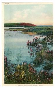 Early 1900s By Shimmo Shore, Nantucket, MA Postcard