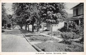 B77/ Sylvania Ohio Postcard c1910 Toledo Area Residence Section Homes