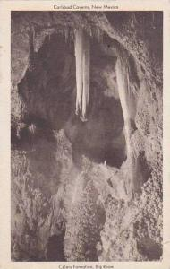 Celery Formation, Big Room, Carlsbad Caverns, New Mexico,   PU_00-10s