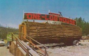 One Tree house , California , 1950-60s
