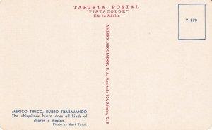 MEXICO, 1950-1960s; Burro Trabajando, The Ubiquitous Burro Does All Kinds Of ...