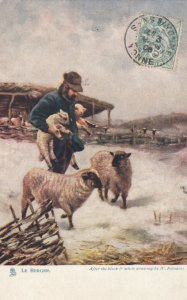 LE BERGER, A Shepherd and his sheep, PU-1908; TUCK # 550