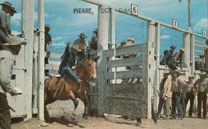 PIERRE , South Dakota , 1950-60s ; Rodeo