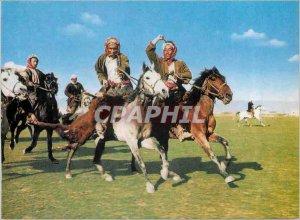 Postcard Modern Afghanistan Buzkashi A Scene of Horses