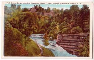 NY - Ithaca. Fall Creek Gorge, Prudence Risley Tower, Cornell University
