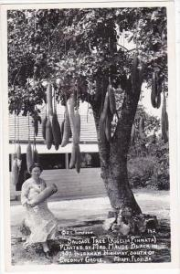 Florida Miami Coconut Grove Sausage Tree Planted 1907 Real Photo RPPC