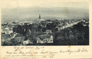 switzerland, ZOFINGEN, Panorama (1903)