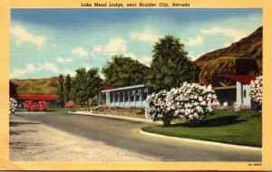 Nevada Lake Mead Lodge Near Boulder City 1952 Curteich