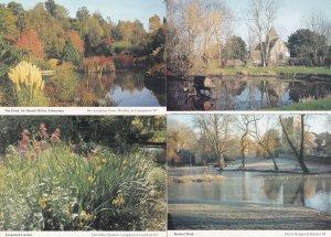 Long Sutton Buriton Harold Hillier Arboretum Pond 4x Rare Hampshire Postcard s