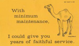 With Mimimum Maintenance I Could Give You Years Of Service Camel Comic Postcard
