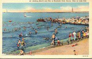 Ohio Huron Roadside Park Bathing Beach and Pier Curteich