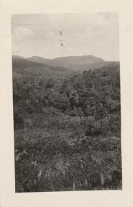 RPPC View from Train at Antioquia, Colombia