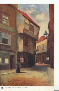 Yorkshire Postcard - The Old Black Bull - York - Ref 16586A