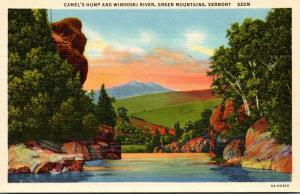 Vermont Green Mountains Camel's Hump and Winooski River Curteich